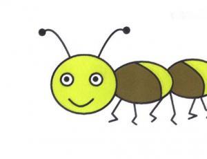 简单蚂蚁简笔画的画法图片教程